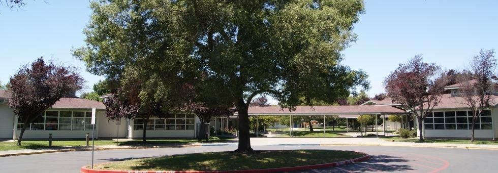 Robert L  Stevens School / Homepage